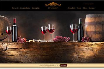 creation_0007_site web viticol 3